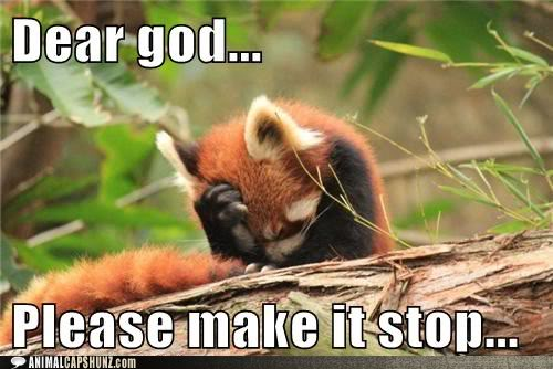 Name:  funny-animal-captions-dear-god-please-make-it-stop.jpg
